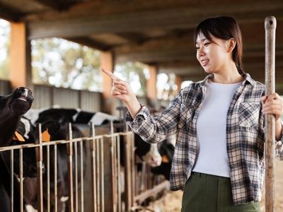 株式会社ウィルエージェンシー 農業推進プロジェクト(人材紹介部)/一貫経営牧場で牛を育ててみませんか?【肉牛生産育成スタッフ】/6021